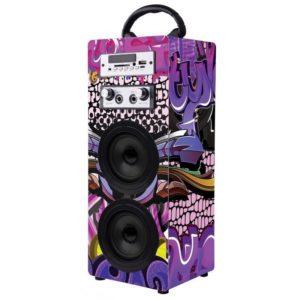 Volkano Carnival Series Speaker Front View